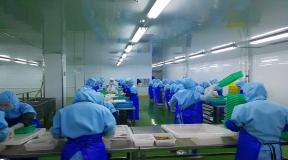 水产加工行业——天泉食品